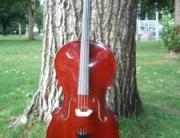 cello-outside-011-225x300