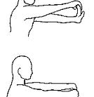 forearm-stretches